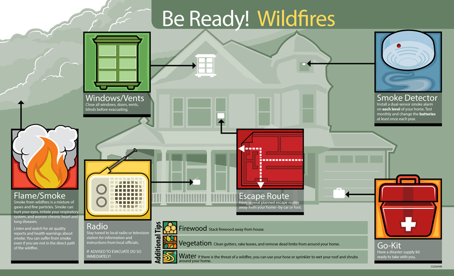 infographics-br-wildfires