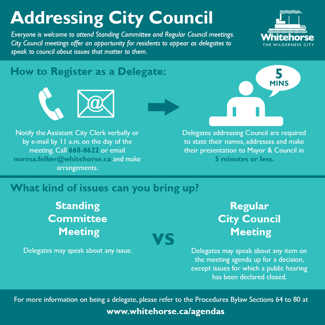 City Council Infographic